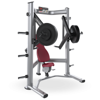 Signature Series Decline Chest Press